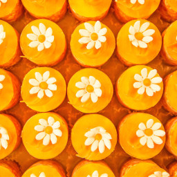 freetoedit orange daisy