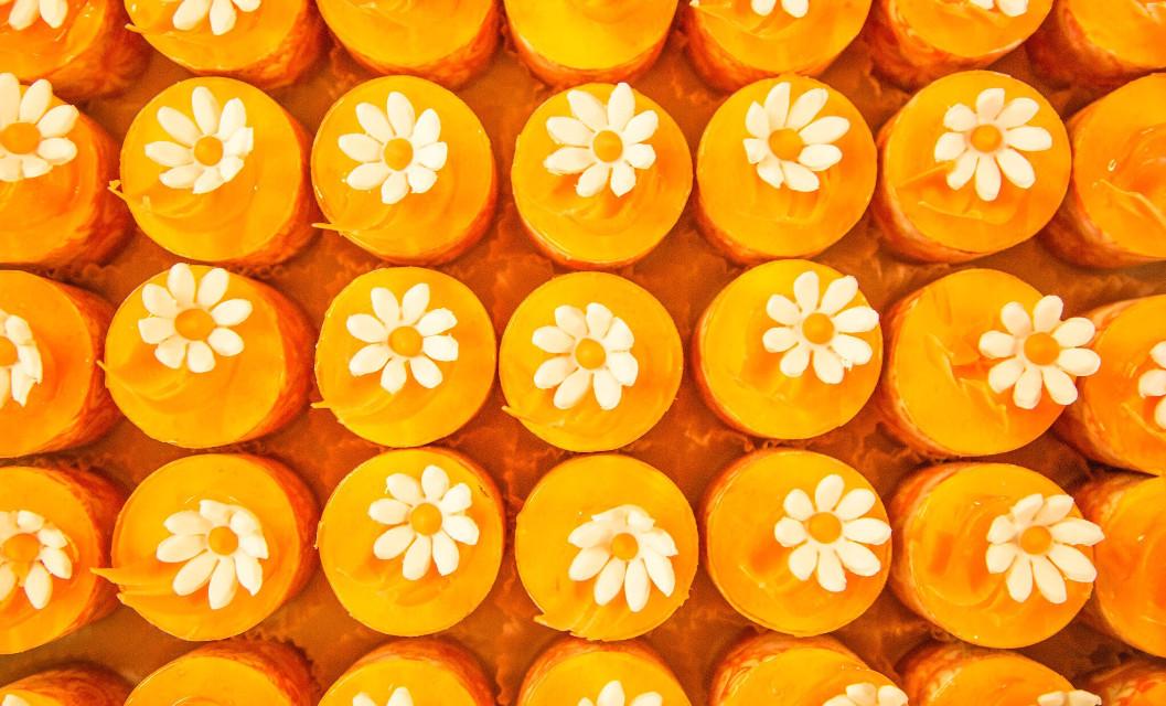 #FreeToEdit #orange #daisy