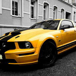 ford cars colorful mustangshelby freetoedit