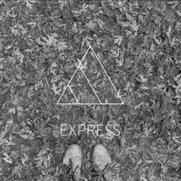 FreeToEdit express autumn fallleaves