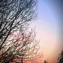 wppsky sky sunrise shilhouette nature