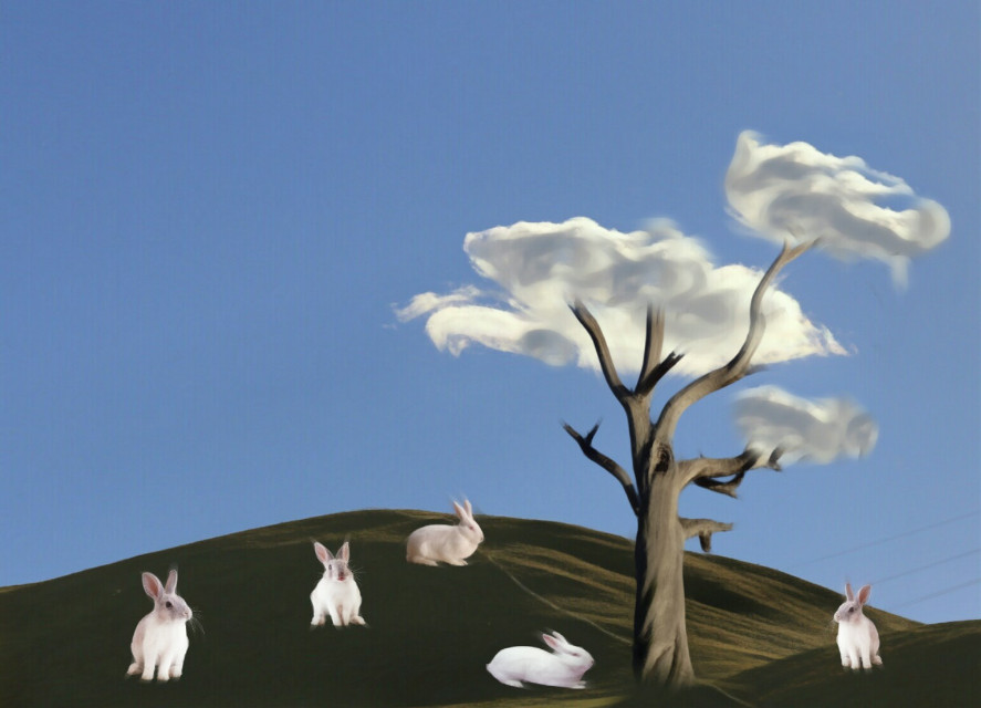 #FreeToEdit  #oilpaintingeffect  #clouds #rabbits  CLOUDS TREE Thanks @PA for trending me 🐇