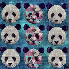 panda art galaxy polygon
