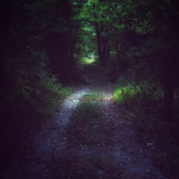 freetoedit path darkforest walking