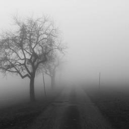 fog frightening
