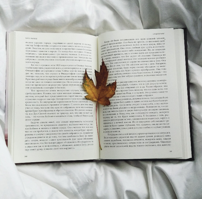Bookmarking books  #leaf #yellow #autumn #pageturner #bed #book #interesting