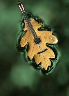 autumn autumnleaves leaves music autumnlove freetoedit