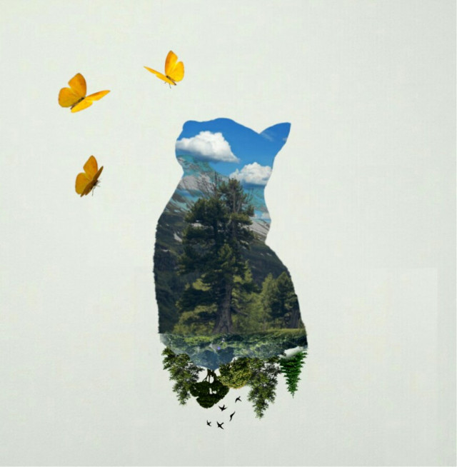#FreeToEdit #cat #trees #butterfly #remix