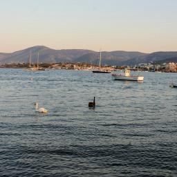 greece summer athens sea