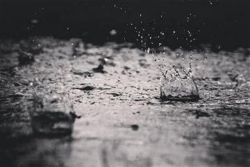 rain water blackandwhite photography summer