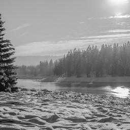 blackandwhite photography nature winter landscape