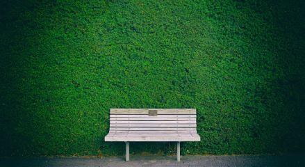 freetoedit background bench wooden leaves
