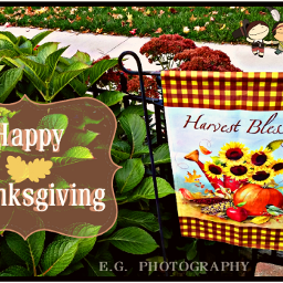 thanksgiving2016 autumn myphotography clipart