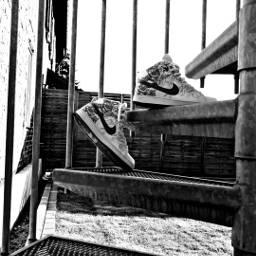 treppe myshoes bw schwarzweiss upstairs